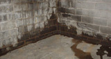 Saint Paul's experts in wet basement repair
