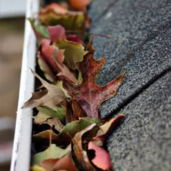 Clogged gutters filled with fall leaves  in Minnetonka